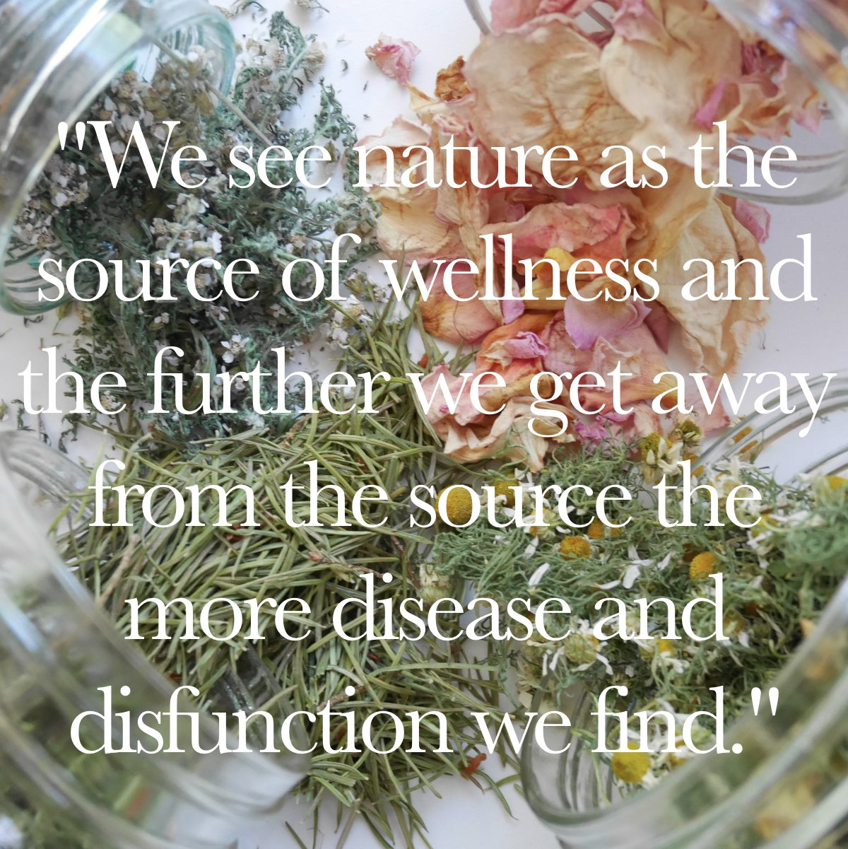Nature Based Self Care : Holistic Perspectives, Pure Sourcing, and Whole Plants