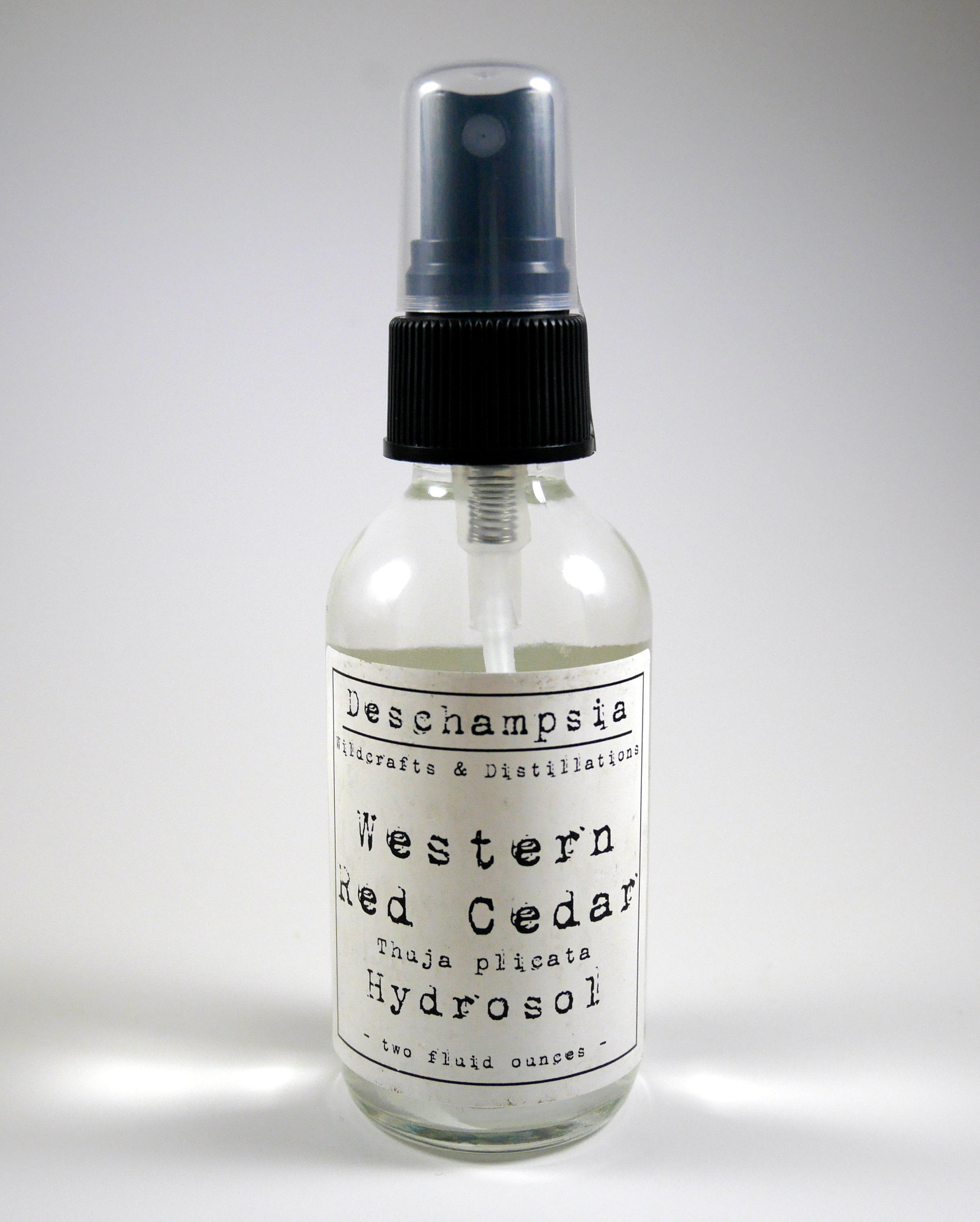 Western Red Cedar Hydrosol - Deschampsia
