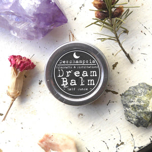 Dream Balm - Deschampsia - Nature Based Self Care