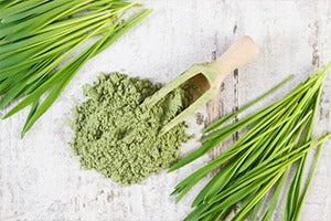 Jump on the Healthy Bandwagon with Wheatgrass Powder!