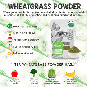 USDA Certified Organic Wheatgrass Powder - 100 Gm