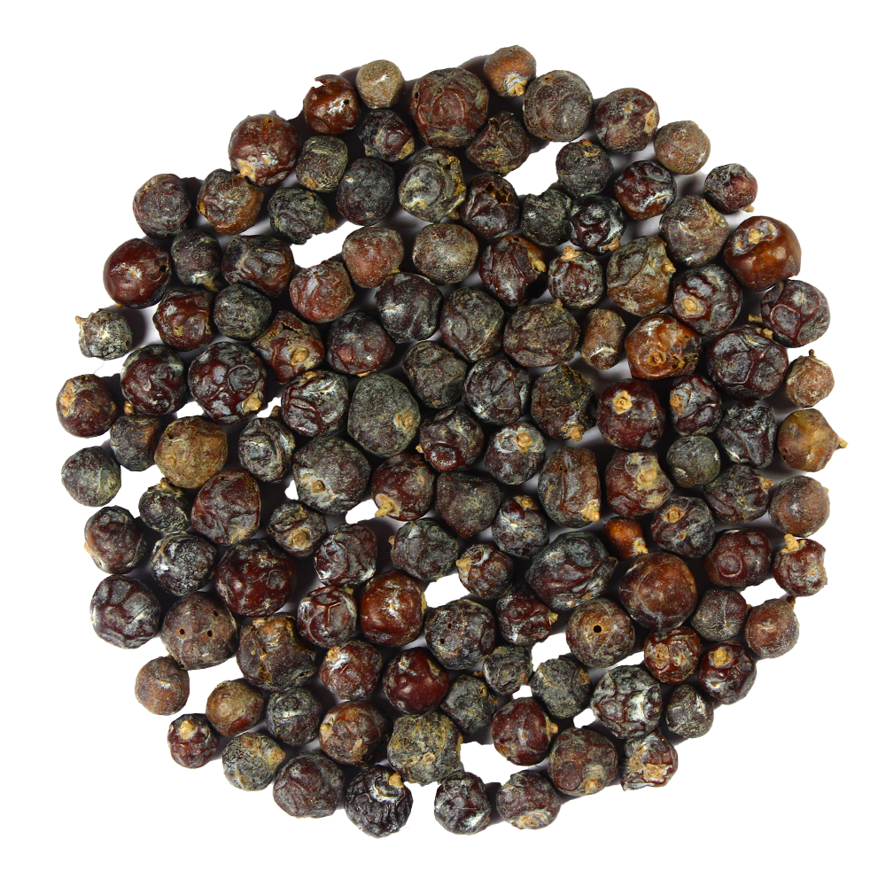 Juniper Berry - Antioxidants Rich Superfood