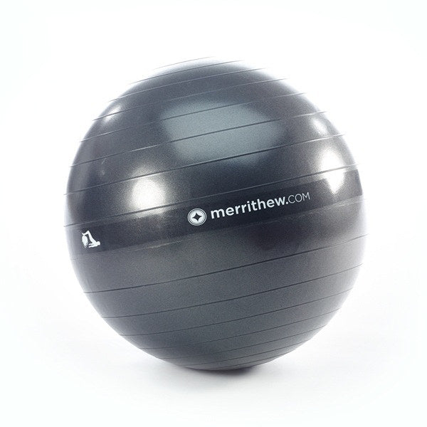 Stability Ball 55cm, HALO (Gray)