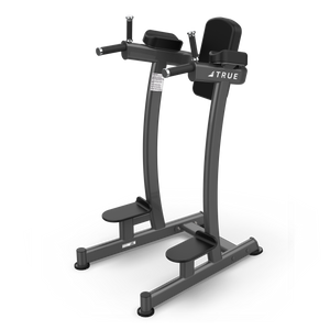 True Fitness XFW Vertical Knee Raise/Dip Charcoal