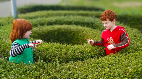 two redheaded boys head towards each other inside a spiral hedge maze, each determined to be the one to push the other back