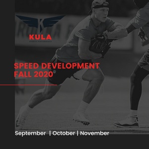 2020 Fall Speed Development