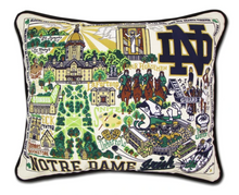 Load image into Gallery viewer, Embroidered Collegiate Pillows SALE