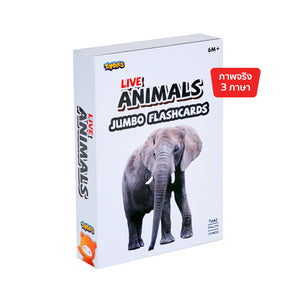 New Jumbo Flash card – Live Animals