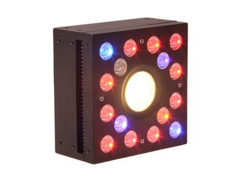 /></strong></p> <p><strong>Product Description:</strong><br> 60w DIY LED full spectrum grow light adopt the humanized design, can be freely combined according to your needs. Each 60w grow light can supply the lighting for one plant. If you have more than one,you can use our free connection device to DIY,combined the grow lights together and adjust the position of each lamp freely according to your needs to ensure that the plants have perfect lighting effects.<br>  High yields in a very short time - COB LEDs are designed with high power COB and double-chip LEDs, the COB is designed at the center, specifically for the top tip of plants, which most closely mimics the natural sunlight and delieveries strong light, creating not only better plants, but reduced growing time and overall cost.<br>  Efficient cooling system- Large aluminum heat sink and quality big fans cooler running make full spectrum led grow light gives off very little heat as well as the grow light fixture works in quiet, extending a longer service lifetime.<br>  High PAR:The followings are the real value we have tested for many times.</p>  <p><strong>Specifications:</strong><br> LED QTY:16*3W+30W/COB<br> Led Beads Power: 3W<br> Actual Power: 65W<br> PAR: 925umol/0.3m 246uoml/0.6m<br> LUX: 28700lux/0.3m 8000lux/0.6m<br> Lifespan: 50,000 hours<br> Spectrum: RED(630nm)/BLUE(460nm)<br> Coverage Area: 0.9㎡/0.3m 1.38㎡/60m<br> Input Voltage: 85-265V<br> Electric Current: 630mA<br> Frequency: 50-60hz<br> Temperature: -20°C~40°C<br> Product Dimensions: 135*135*69mm<br> Net Weight: 0.95kg<br> Shipping Size: 315*310*160mm<br> Warranty: 3 years</p> <p><h3><strong><img src=
