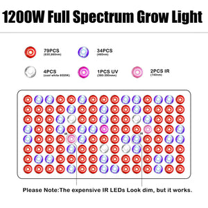Phlizon 600/900/1200/1600/2200W LED Grow Light