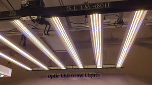 Slim 480H Dimmable LED Grow Light 480w (120 Degree) 3500k