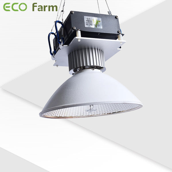 Eco Farm 150W CMH Grow Light Kit - B190