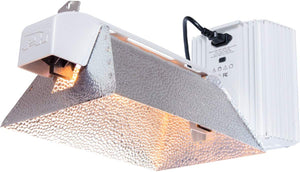 Phantom PHDEDK11 50 Series DS Super Deep Lighting System, USB Interface, 1000W, 208V/240V