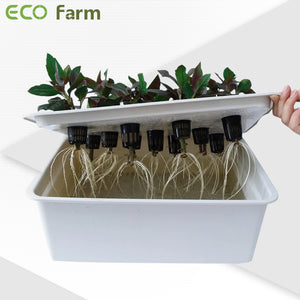 ECO Farm Garden Supplies Hydroponics Growing Net Pot Basin-growpackage.com