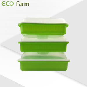 ECO Farm Hydroponic nursery tray seedling tray with lid-growpackage.com