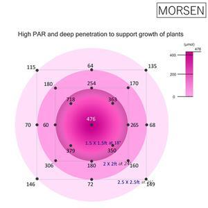 Morsen 600W/1200W LED Grow Light