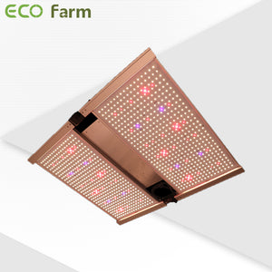 ECO Farm 240W/320W/480W/650W Foldable Quantum Board Pro