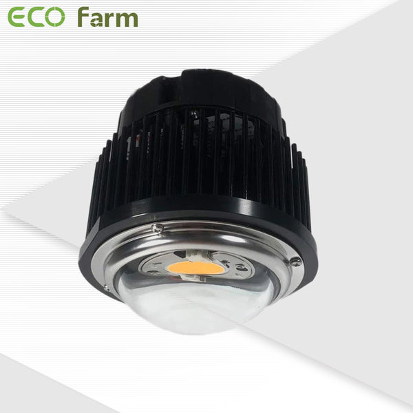 Eco Farm 50W/100W DIY Single CREE COB Led Grow Light