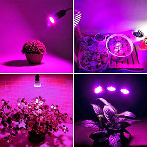 King-Mini 9W LED Grow Light