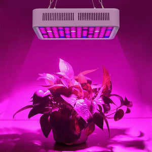 Roleadro 600/800/1200W LED Grow Light