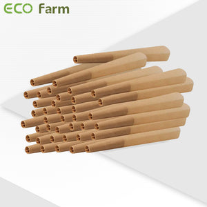 ECO Farm Pre-Rolled Cones Classic King-growpackage.com