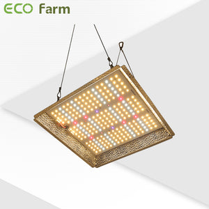 ECO Farm G3 LM561C 100W/240W/330W Quantum Board with 3 Dimmers