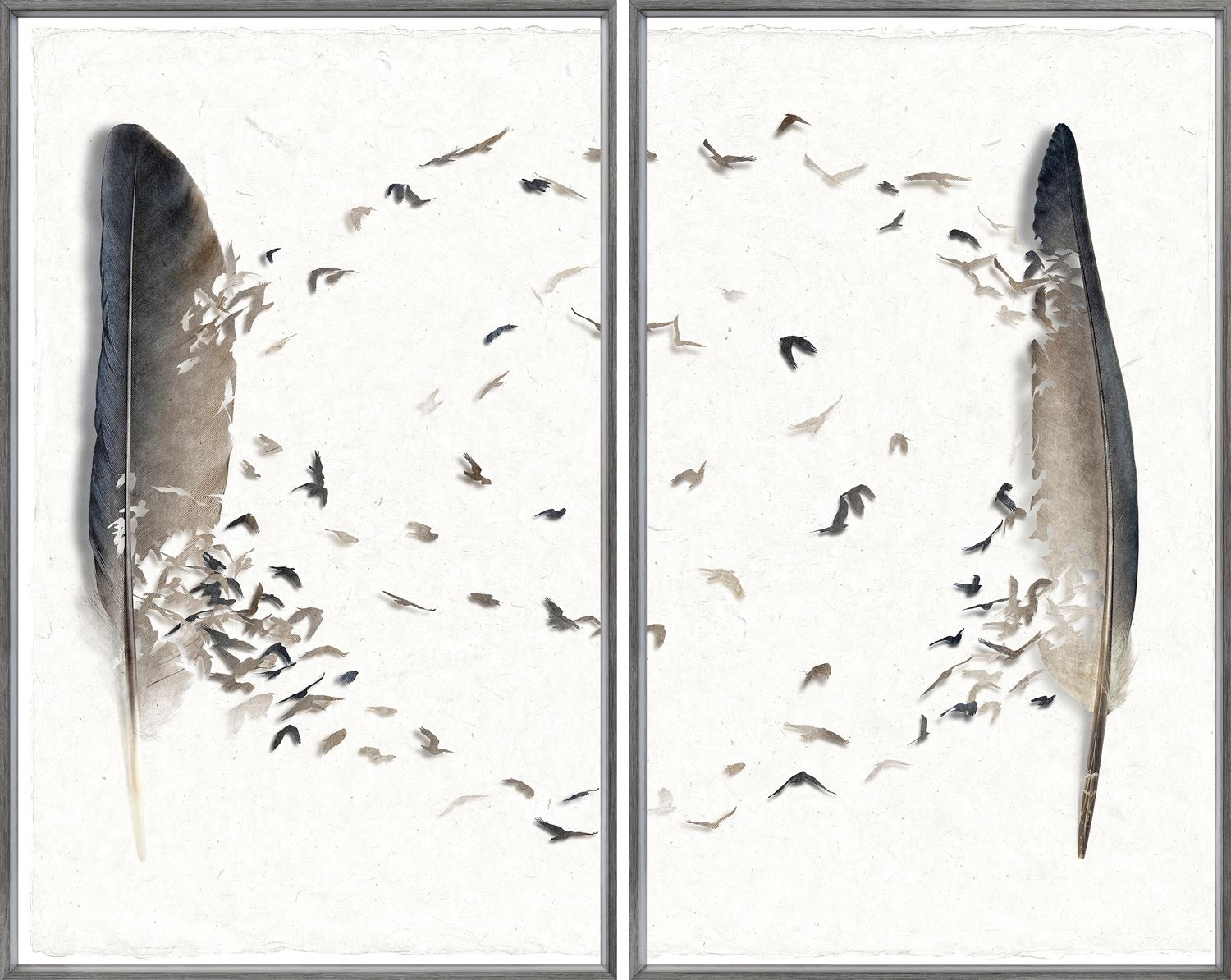 Feather Circuit Diptych