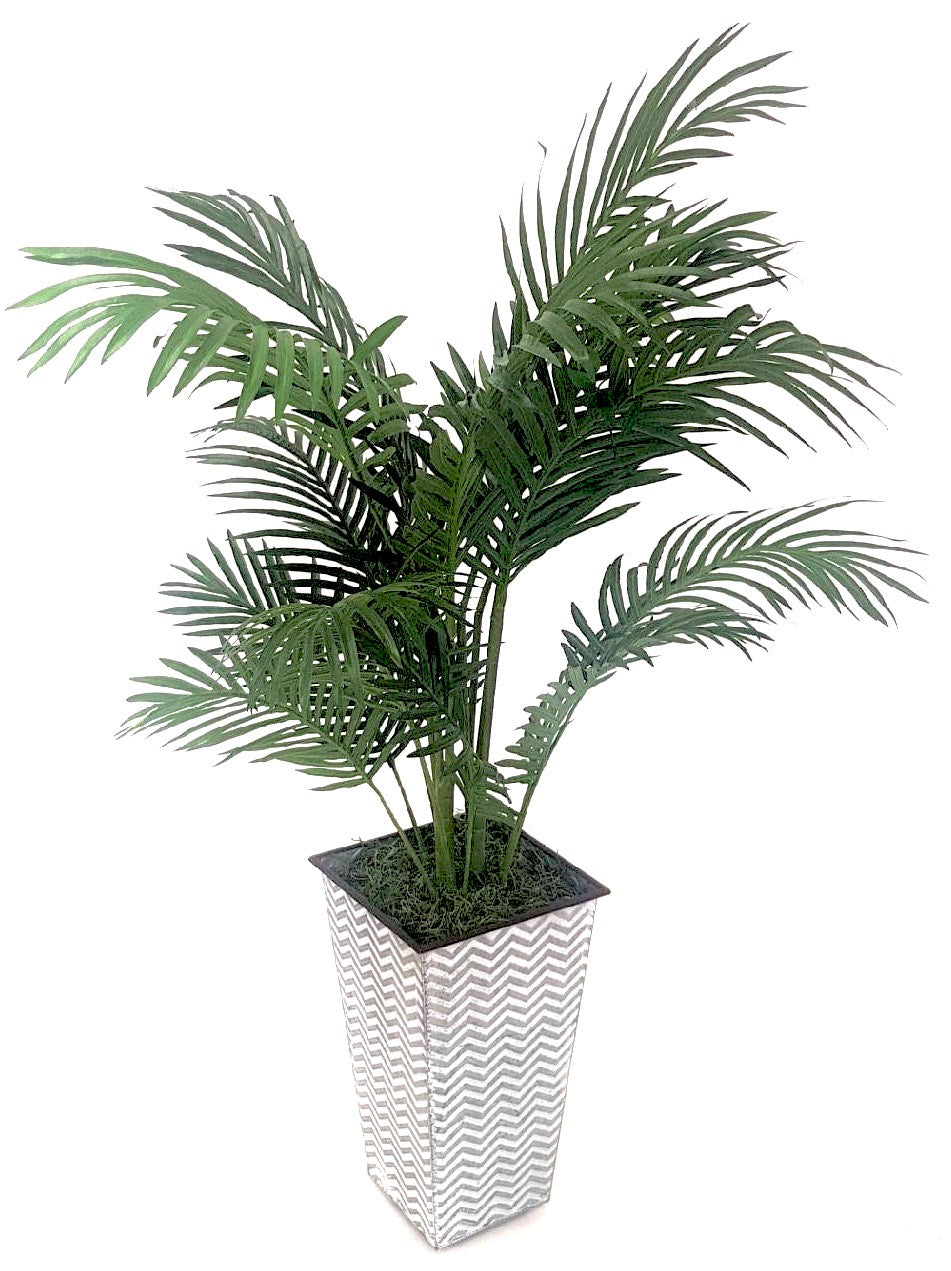 Palm in Chevron Vase