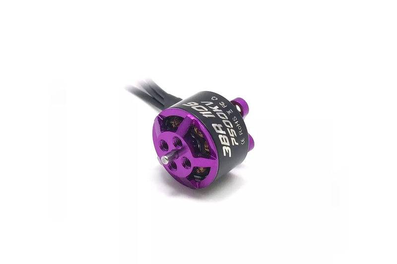 3BHOBBY Racing Motor 1106 (2pcs)