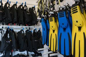 PADI Open Water and Advanced Open Water Diver Course Package