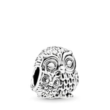 Load image into Gallery viewer, Pandora Charming Owls Charm