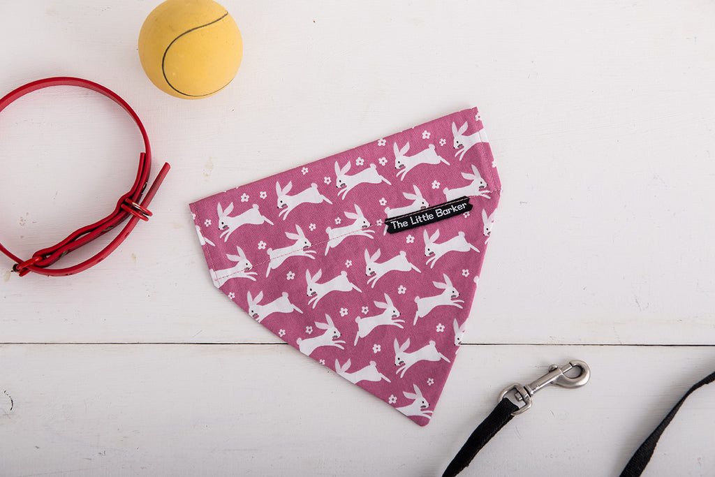 Rabbit Pattern Dog Bandana