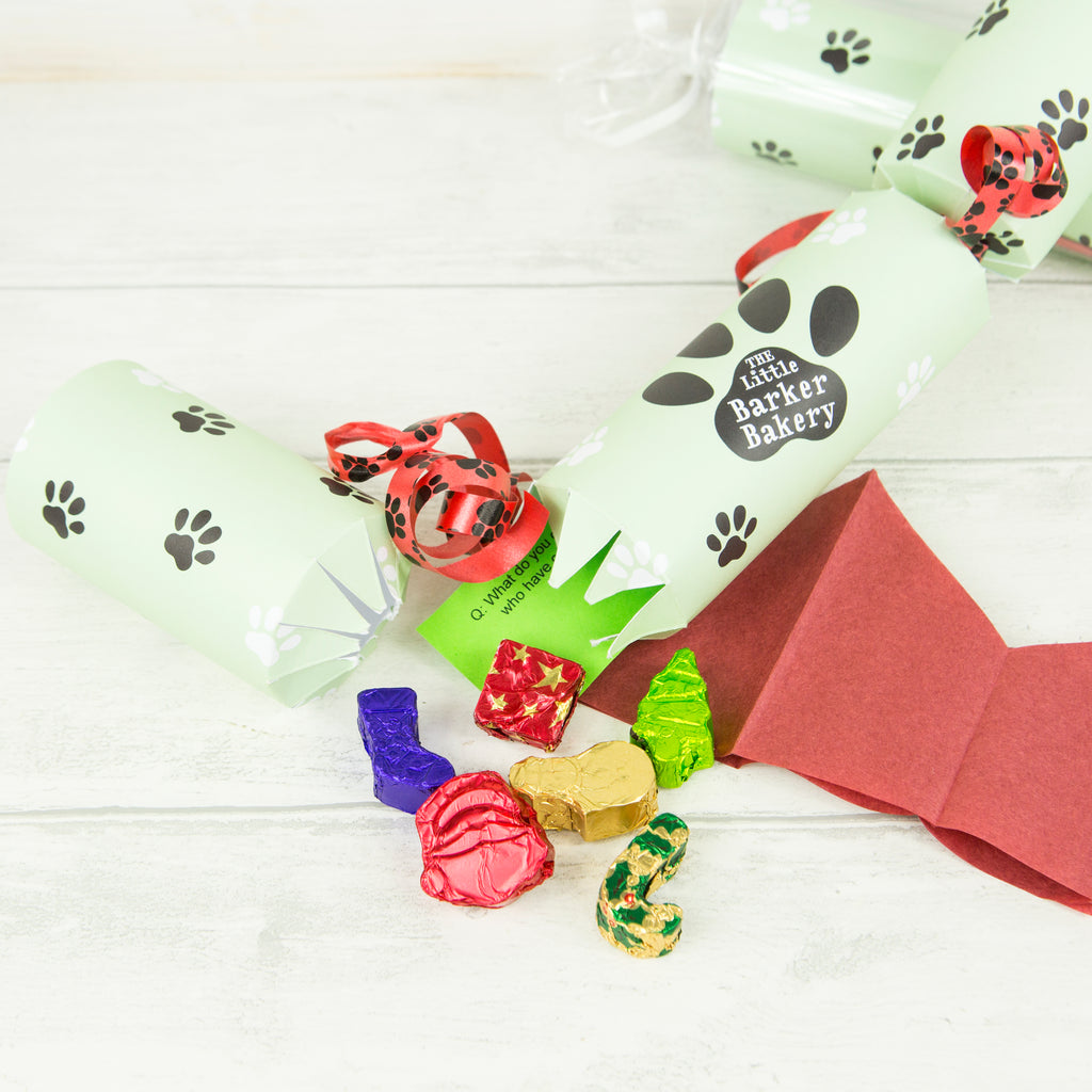 Christmas Cracker for Dogs