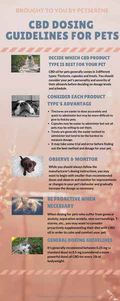 CBD Dosing Guidelines For Your Pet