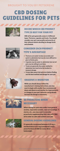 CBD Dosing Guidelines For Your Dog & Cat – PetSerene