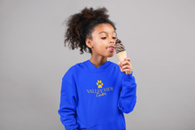 Load image into Gallery viewer, Valley View Youth Pullover Hoodie