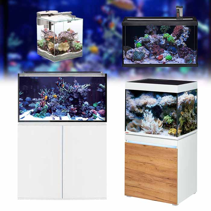 aquarium-eau-de-mer-recifal-collection-sur-bao-aquarium-com