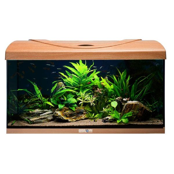 AQUAVIE StartUp 80 - Aquarium Hêtre Rectangle tout équipé 112L