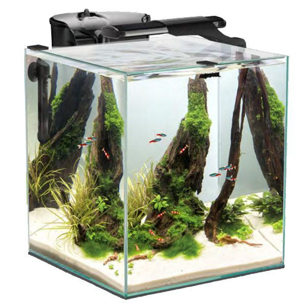 aquael-fish-and-shrimp-set-duo-35-noir-nano-aquarium-equipe-49-l