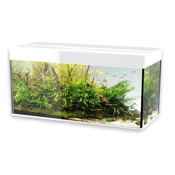 aquarium-glossy-100-blanc-laque-led-aquael-cuve