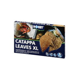 catappa-leaves-xl-hobby-feuilles-de-badamier-pour-conditionner-l-eau-de-l-aquarium-naturellement