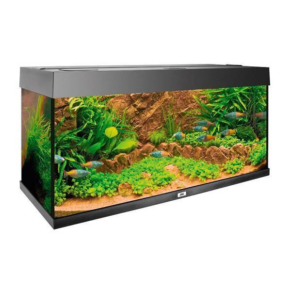 cliff-dark-decoration-de-fond-aquarium-juwel