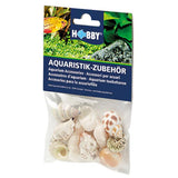hobby-sea-shell-set-10-coquilles-escargots-pour-aquarium