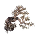 arbre-bonsai-legno-oriental-wind-7-amtra-pour-aquarium