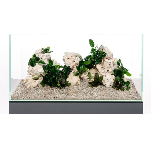 roches-naturelles-a-empiler-pour-aquarium-de-60L-aquadeco-multi-holestone-demo-plante
