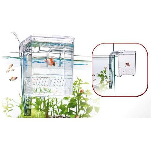 pondoir-externe-wave-breeding-box-small