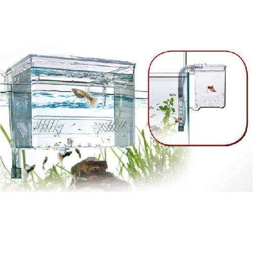 pondoir-externe-breeding-box-wave-1-2-L-sur-bao-aquarium-com