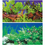 poster-hobby-double-face-plante-1-5