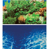 poster-hobby-double-face-plantes-8-marin-blue