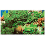 poster-hobby-double-face-plantes-8